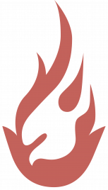 Vision Partners Flame